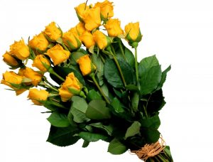 roses-yellow-bouquet