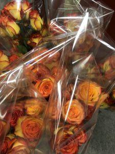 Zonta IWD Signature Roses